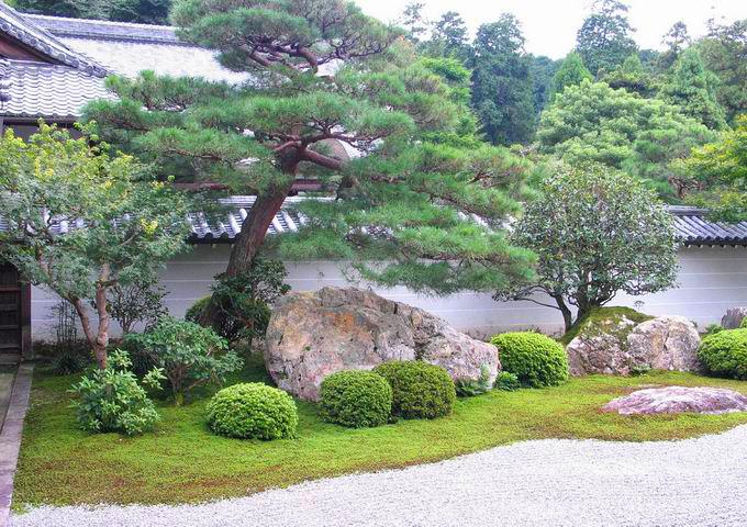 Il giardino zen for Il giardino di zen