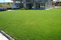 Aqua Centar - Saveti za odrzavanje dvorista